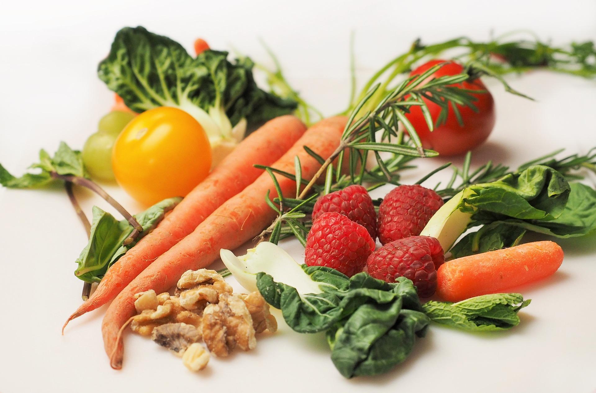 nutricion y fisioterapia